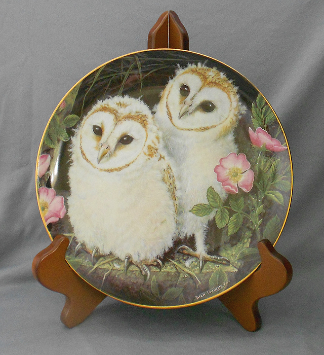 WEDGWOOD PLATES - THE BABY OWLS COLLECTION by DICK TWINNEY